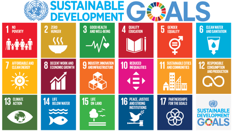Sustainable Development Goals graphic