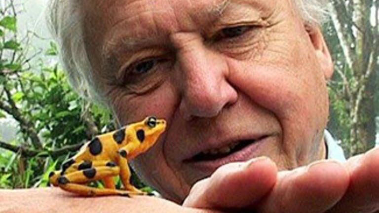 Sir David Attenborough with frog
