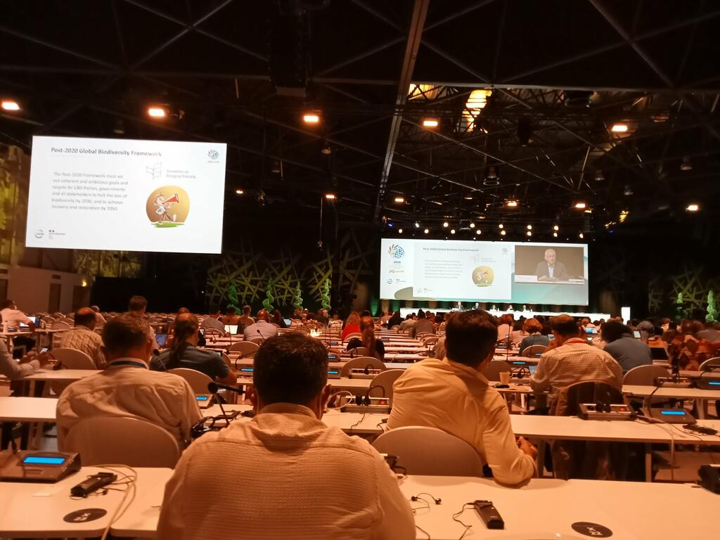 IUCN Members Assembly