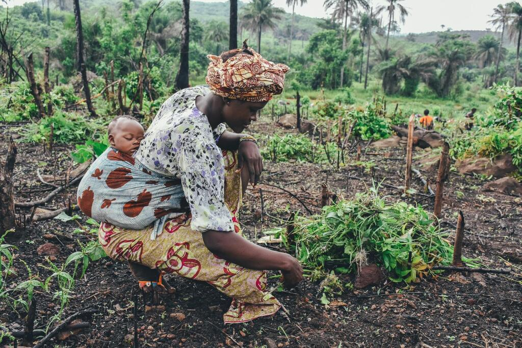 woman with baby harvesting crop