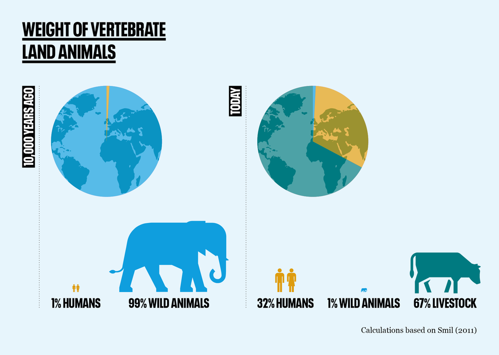 Vertebrate animal mass graphic