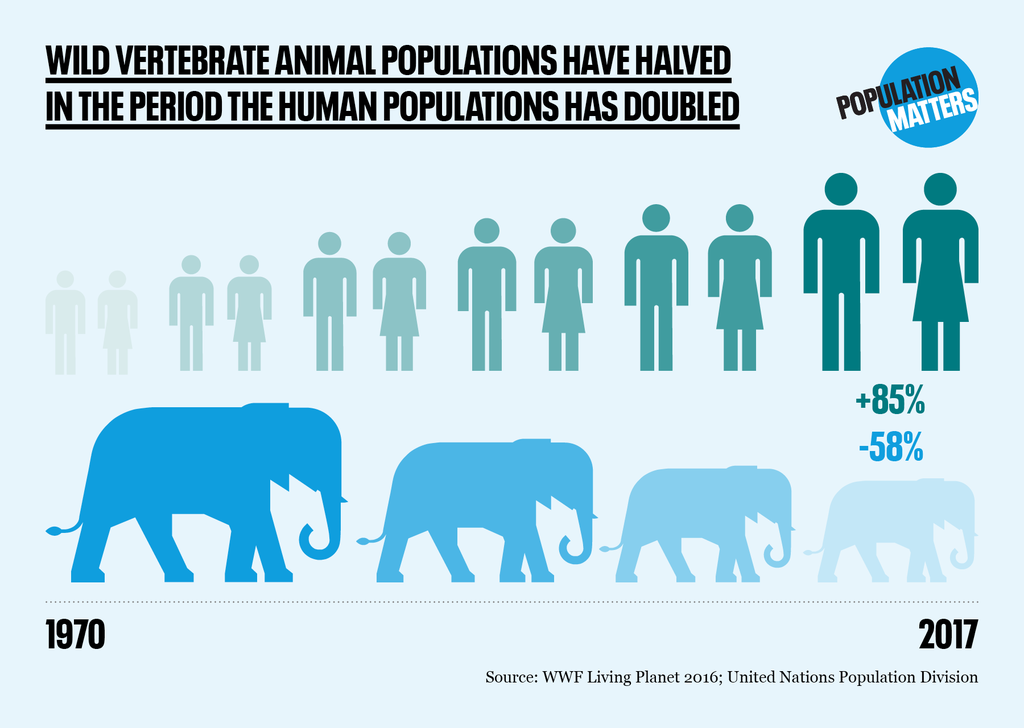 Wildlife loss and human population growth graphic